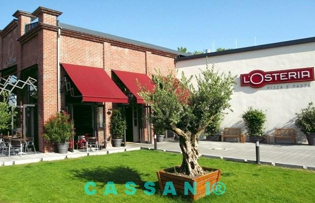 Gastronomie Markisen an Fassade zur Terrassenüberdachung vom Markisen Hersteller Cassani